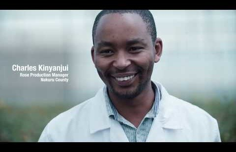 Syngenta: Be part of Every Flower Counts